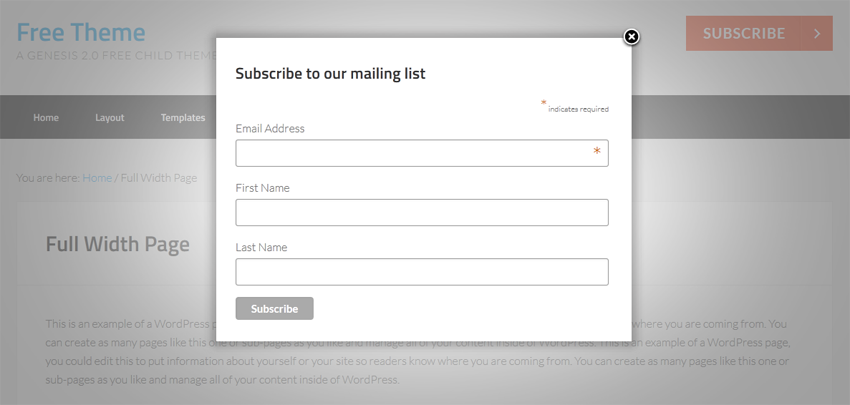 Mailchimp-signup-from